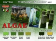 Set LifeColor SPG07 Algae